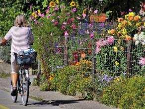 Des rendez-vous vélo à Castres !