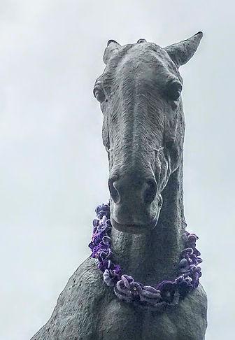 Purple Poppy Day.JPG