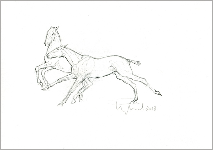 Polo Pony Sketch for Sculpture