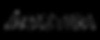 nautica-logo copy.png
