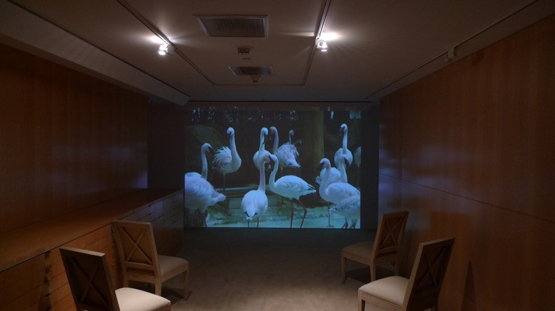 """67 BOWS on View at """"Remote Viewing"""", Curated by Paul Young, at the Pacific design center, Los Angeles, USA. 2010"""