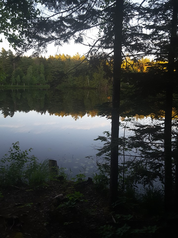 Robinson's pond from Cottage #3