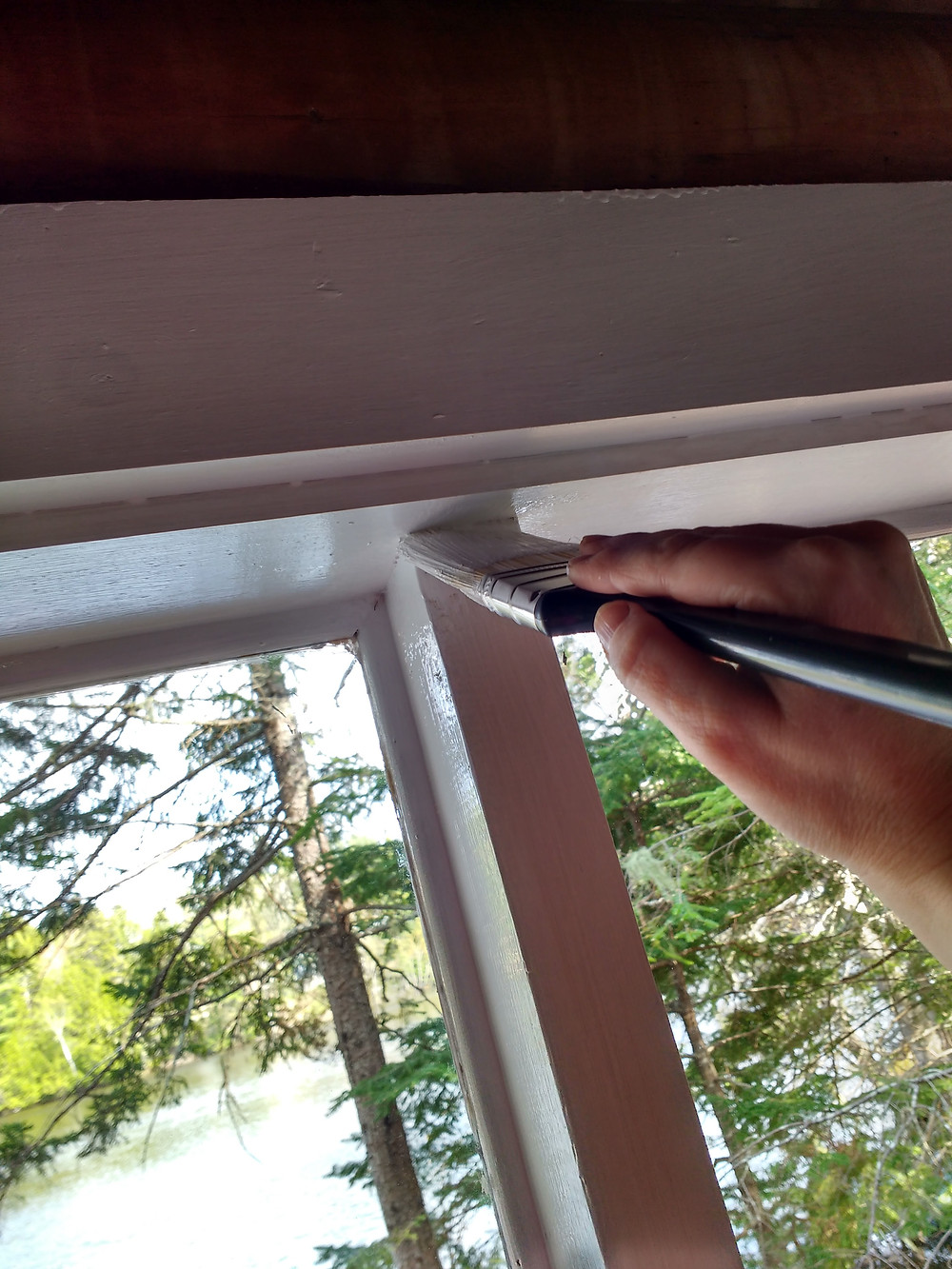 #3 painting window frames