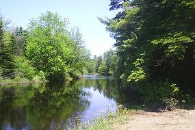 The Denny's River