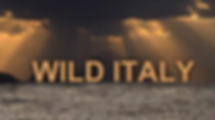 WILD ITALY2.png