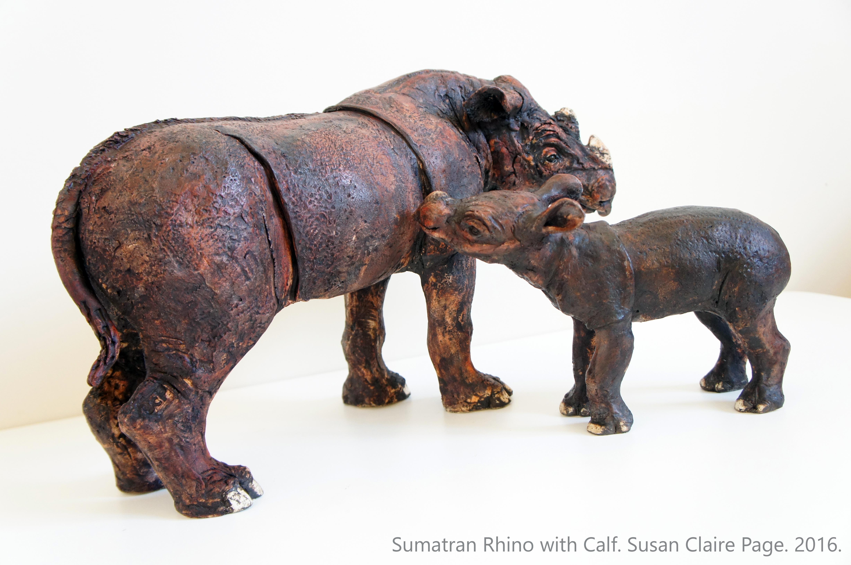 Sumatran Rhino Pair