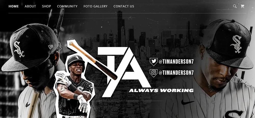 Tim Anderson Personal Website Homepage (TA7)
