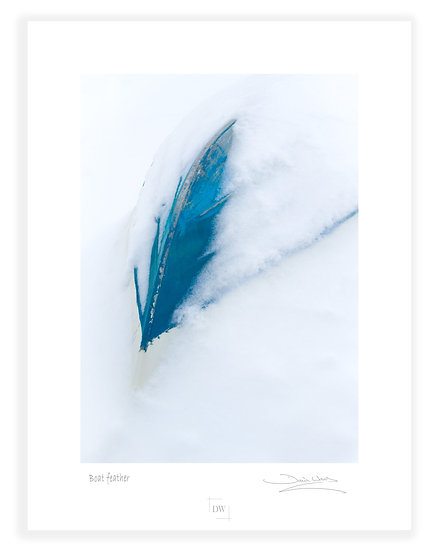 Boat Feather