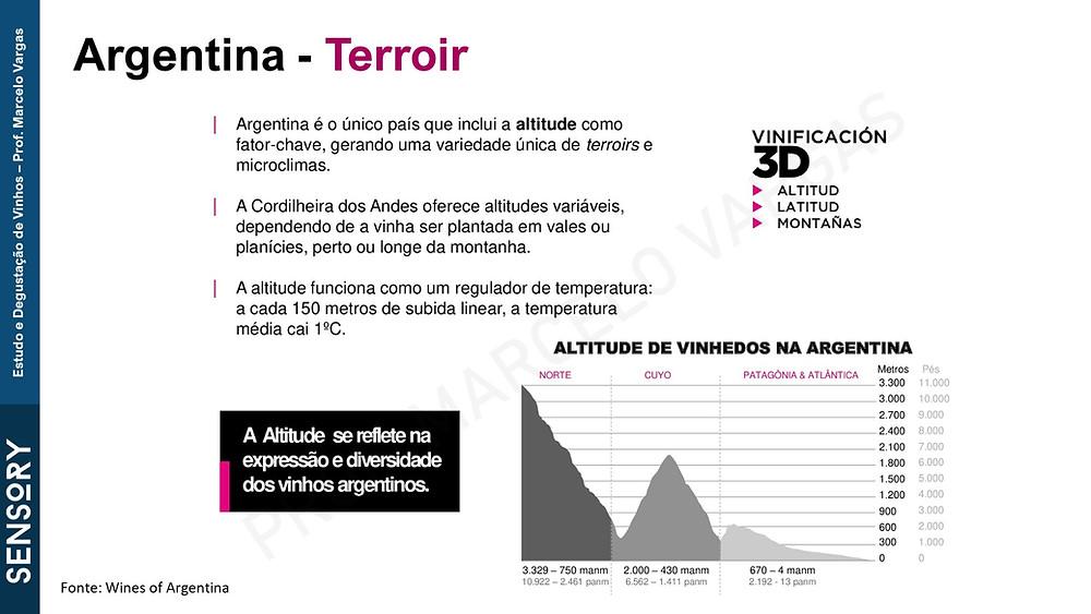 A altitude é um fator determinante no perfil do vinhos argentino