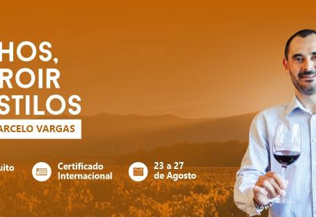 LOTADO - Workshop gratuito - Vinhos, terroir e estilos