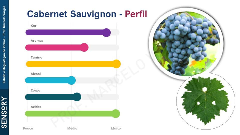 Perfil sensorial de muitos vinhos Cabernet Sauvignon (fonte: prof. Marcelo Vargas)