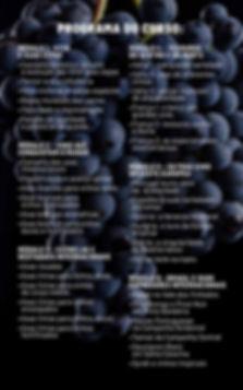 curso-uvas-oficial-3.jpg