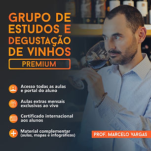 Redes Sociais - Premium - Marcelo Vargas