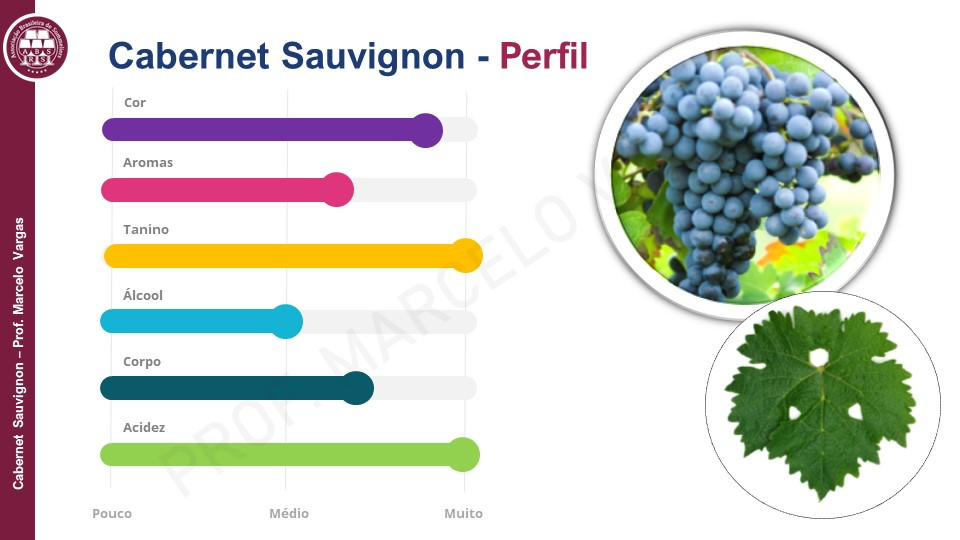 Perfil sensorial comum em vinhos Cabernet Sauvignon (Imagem: Prof. Marcelo Vargas)