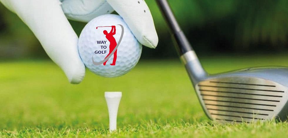 WTG bal met Logo.jpg