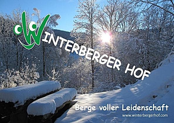 Winterberger Hof Berge.jpg