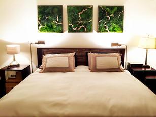 artisan-moss-NYC-apartment-green-wall.jp