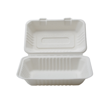 Rectangular Hinged Container