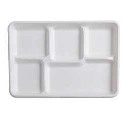 Five Section Tray