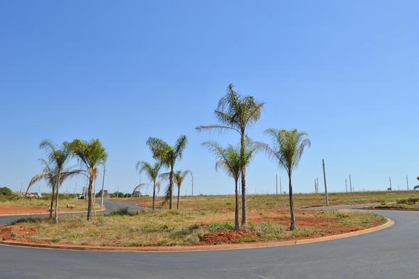 Jardim Manacá Agosto (11).png