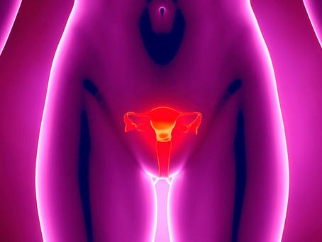 Menopausa: Implante para reposição hormonal é opção na menopausa