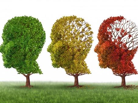 Alzheimer: a importância do cuidador no acompanhamento de doentes crônicos portadores de Alzheimer