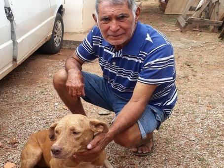 Alzheimer: vira-lata acompanha dono que estava desaparecido até serem encontrados pela família em MT