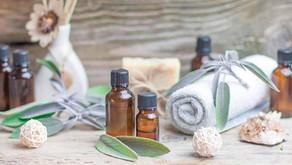 Menopausa: Sálvia - seu óleo essencial é medicinal. Saiba como e quando usar.