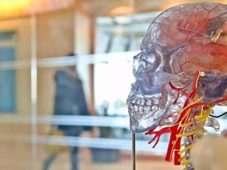 Alzheimer: Cientistas testam proteína sintética que repara danos no cérebro e na medula espinhal