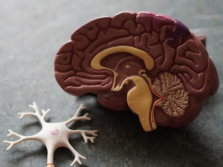Covid-19: Danos no cérebro se assemelham aos de pessoas que morreram com Alzheimer