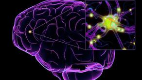 Alzheimer: análise do sangue é capaz de detetar Alzheimer antes dos sintomas surgirem