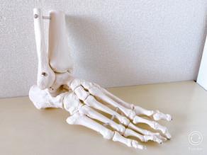 足にも姿勢がある