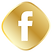 —Pngtree—golden facebook icon_3562050.pn