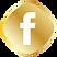 —Pngtree—golden facebook icon_3562050.pn