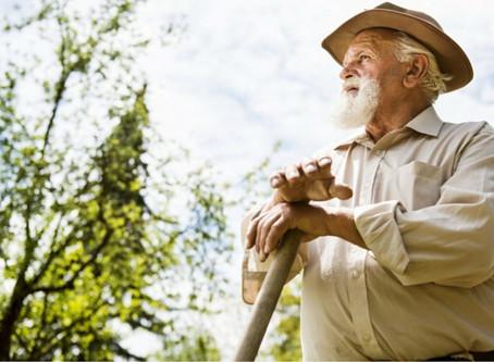 TNU revisa entendimento e reconhece tempo rural remoto para aposentadoria por idade híbrida