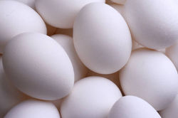 Fresh_Brown_and_White_chicken_eggs_for_ale.jpg