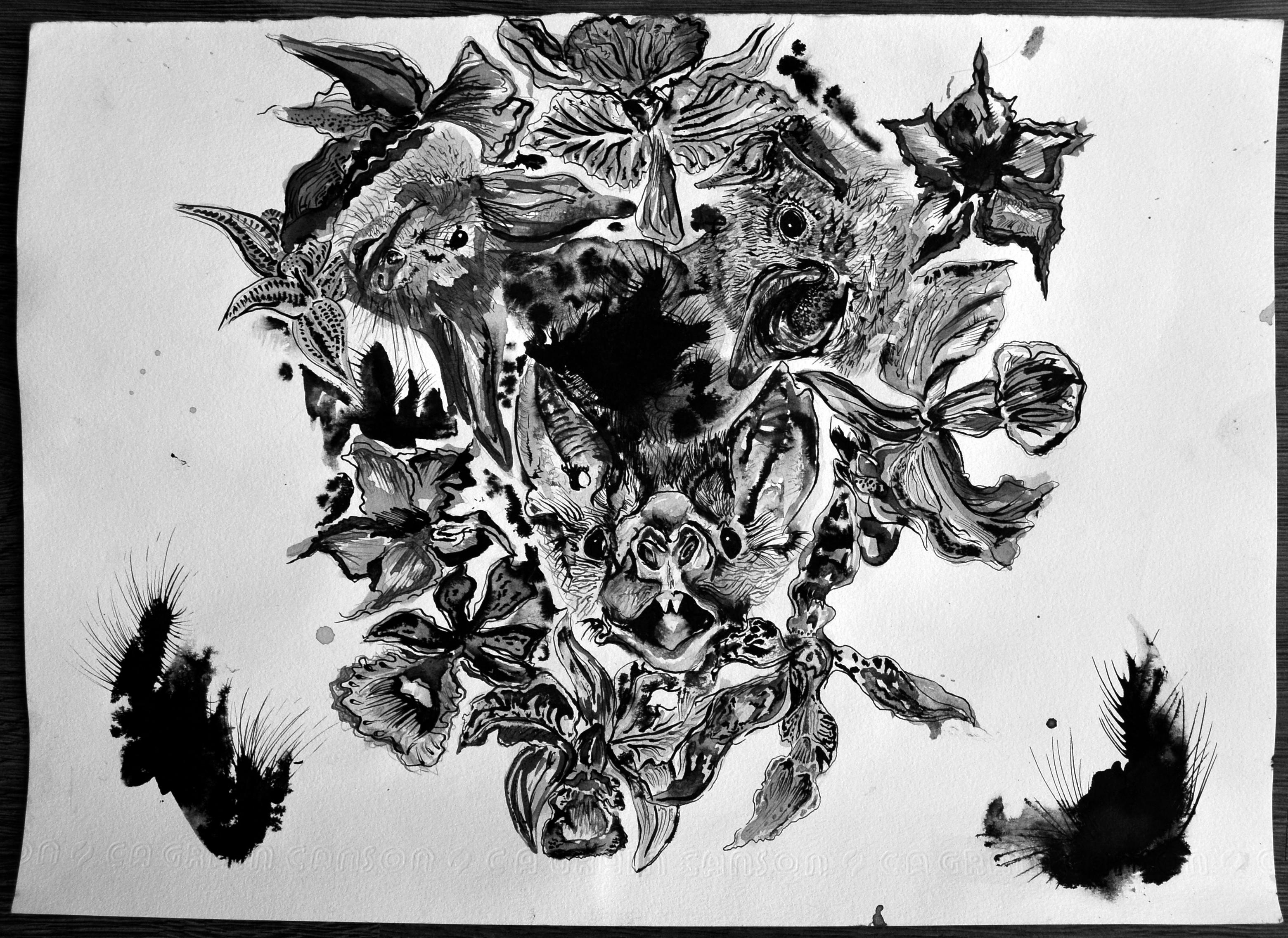 3 murciélagos, 7 orquídeas y 2 rosas