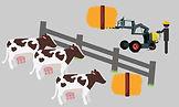 Chargeurs tout terrains à conducteur accompagnant apportant et chargeant des aliments aux vaches