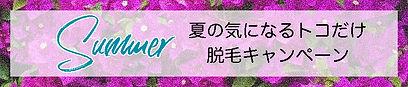 夏脱毛キャンペーン.jpg