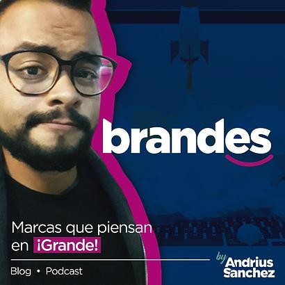 Brandes_logo-02.png