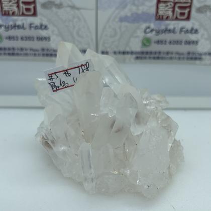 精品級白晶簇 No.5