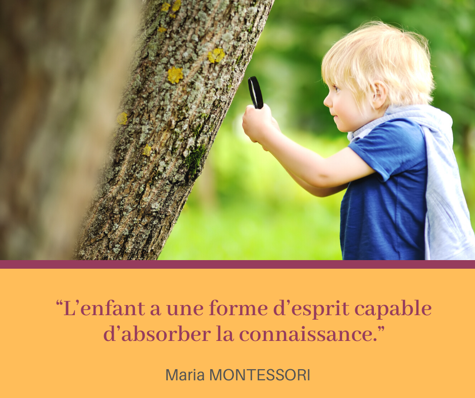 Campagne citation - 06.png