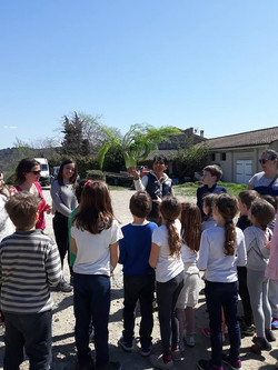 école-Montessori-les-oliviers-216