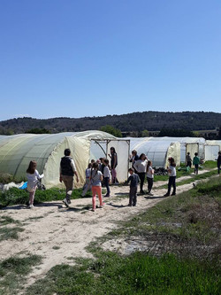école-Montessori-les-oliviers-215