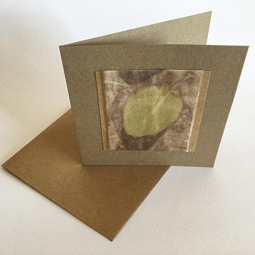 botanic print gift card