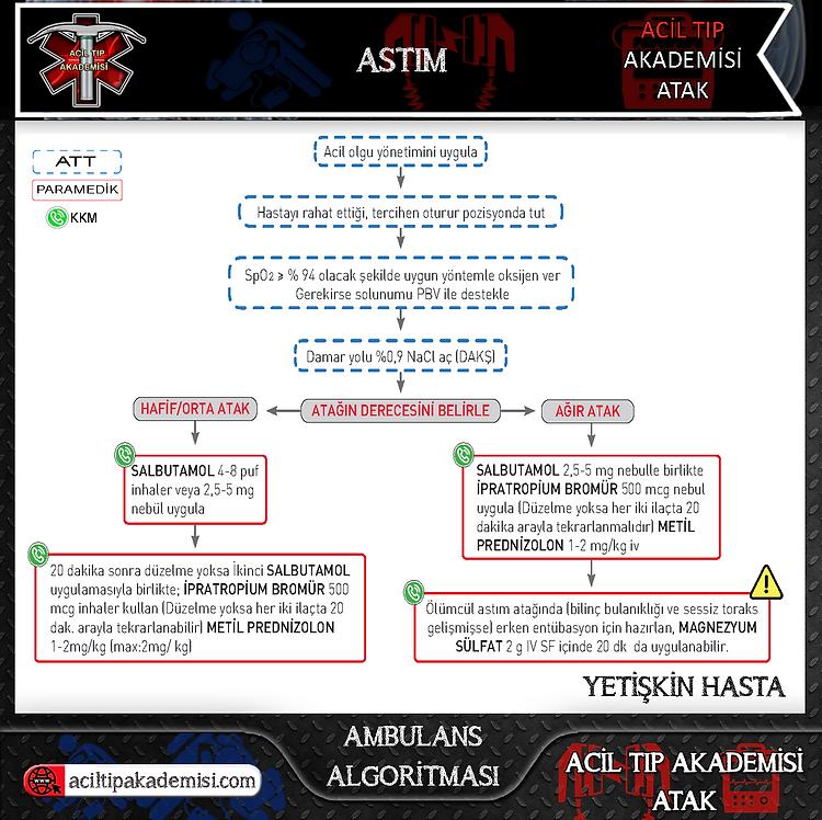 6.Acil Tıp Akademisi - ATAK - Astım.png