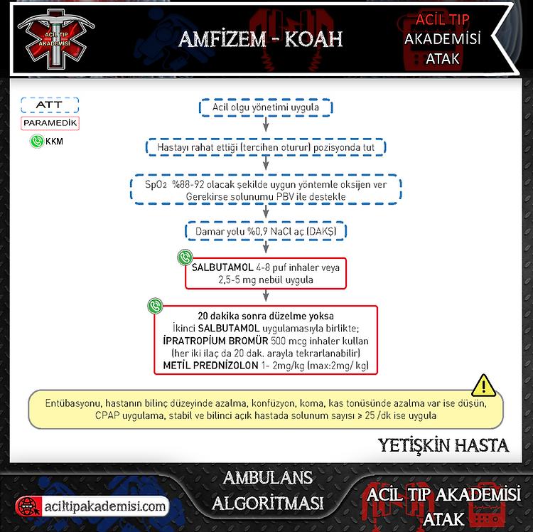5.Acil Tıp Akademisi - ATAK - Amfizem-KO