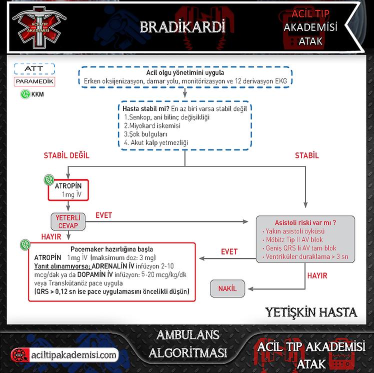 10.Acil Tıp Akademisi - ATAK - Bradikard