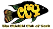 CCY%20logo_edited.png