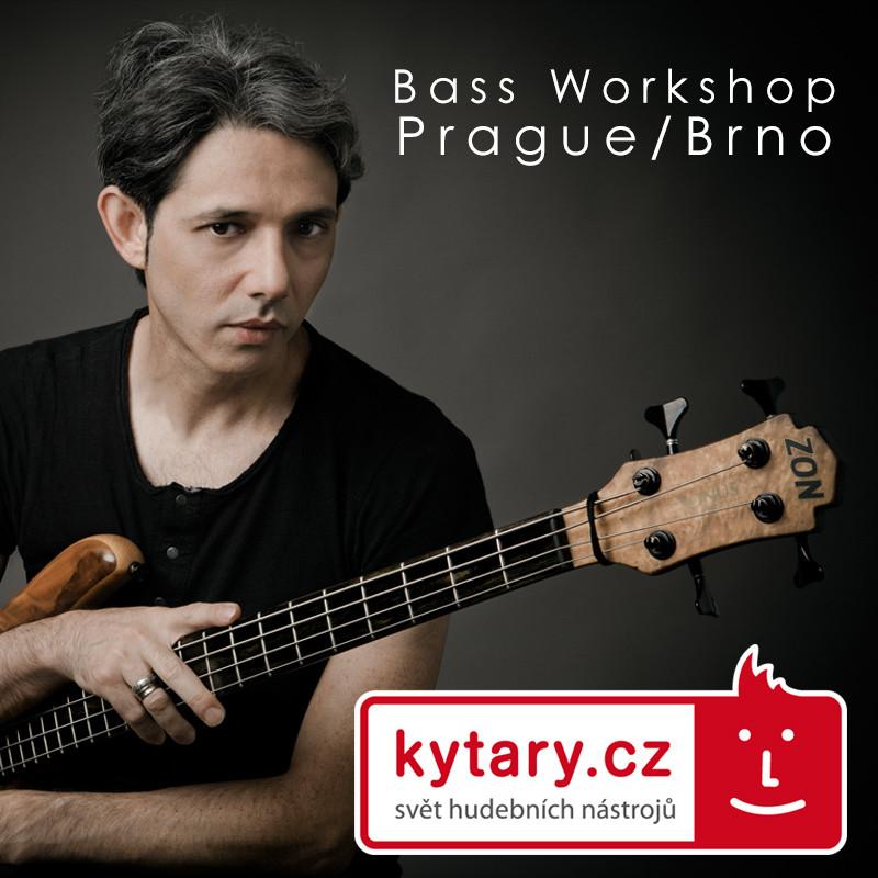 kytary cz workshop